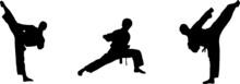 Judo Icon Isolated On Background