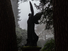 Silhouette Of The Angel Statue Of The Angel On The Cemetery Between The Trees On A Foggy Day.