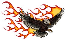 Flaming Eagle - Vehicle Graphic. Ready For Vinyl Cutting. .