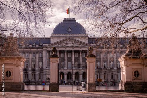 edificio historico no centro de bruxelas Wallpaper Mural