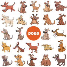Cartoon Funny Dogs Characters ...