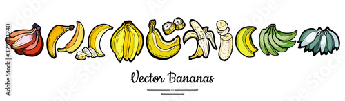 Fotografia, Obraz Bananas set vector isolated