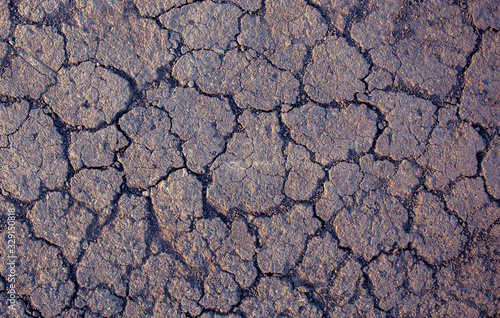 Photo Abstract texture of dry earth closeup