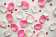 Pink And White Rose Petals On ...