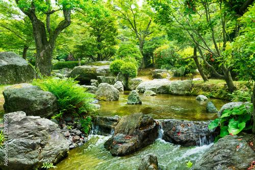 Foto Spring in a Japanese garden