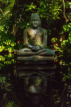 Reflection Of Buddha Statue In...