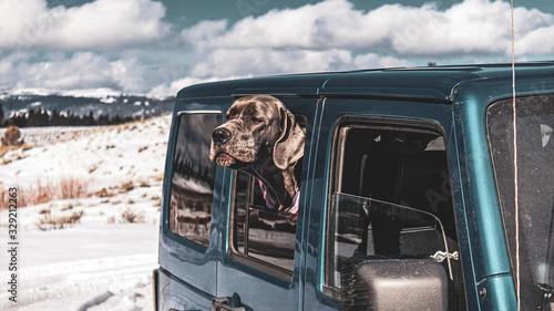 Fotografía Dane in Jeep 1 of 2