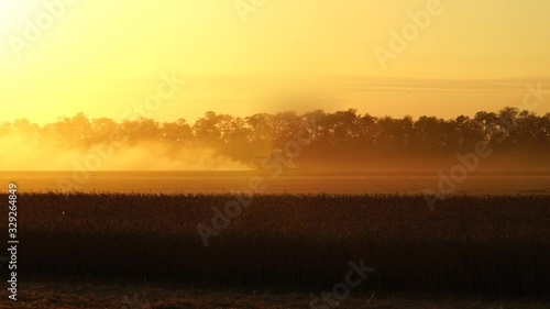 Aufkleber - Combine harvester harvests wheat at sunset. Slow motion