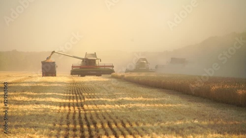 Aufkleber - Harvesting of wheat. Combine harvesters at work.