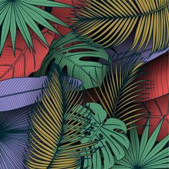 Fototapeta Do pokoju młodzieżowego Tropical summer leaves background with jungle plants