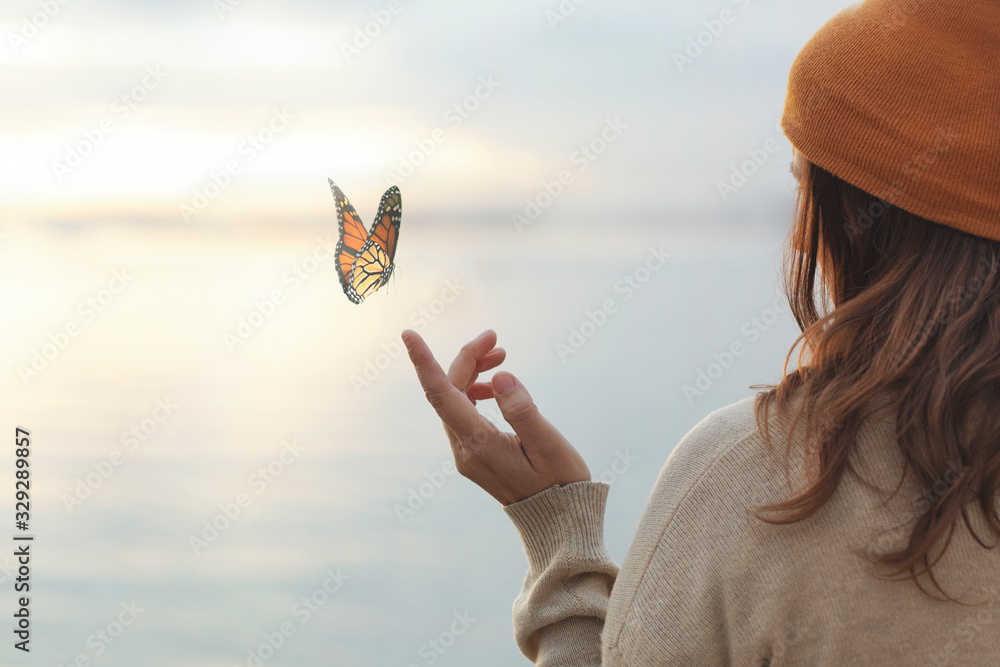 Fototapeta colorful butterfly is laying on a woman's hand