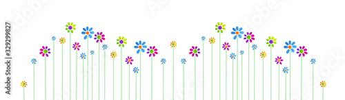 fiori, piante, primavera Fototapeta