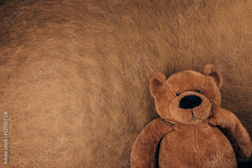 Teddy bear isolated on brown background
