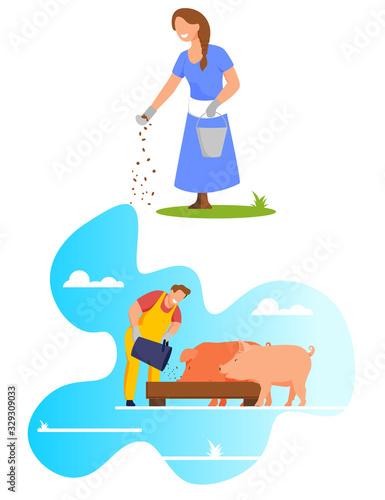 Fototapeta Woman Pouring Grain from Bucket on Ground, Feed Chicken, Farmer Feeding Pigs Put Food in Trough, Livestock, Domestic Animal Husbandry, Natural Eco Farm Production, Cartoon Flat Vector Illustration obraz na płótnie