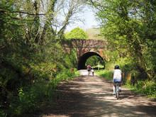 Family Cyclists Riding Along A...