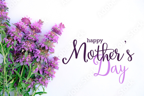 Fotografía Mothers day background with purple flowers and text.
