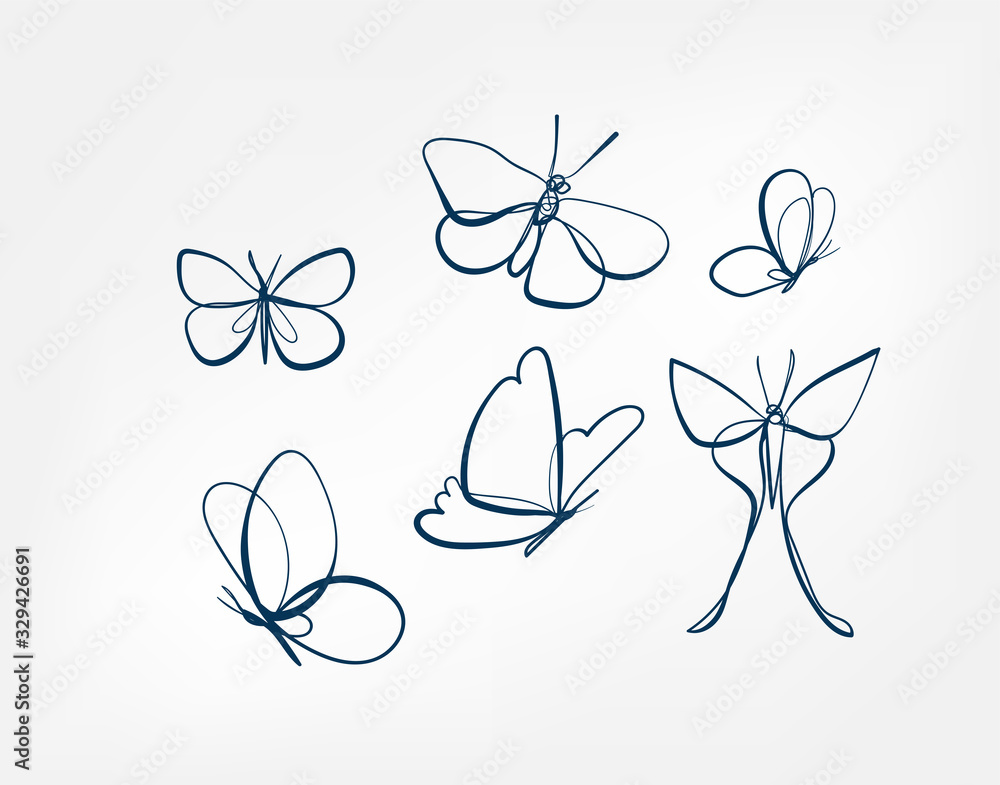 Fototapeta butterfly insect vector art line isolated doodle illustration
