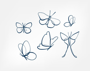 butterfly insect vector art line isolated doodle illustration