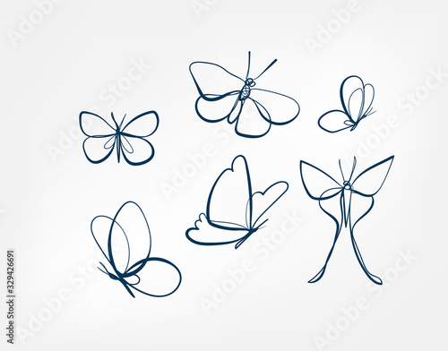 Fototapeta butterfly insect vector art line isolated doodle illustration obraz