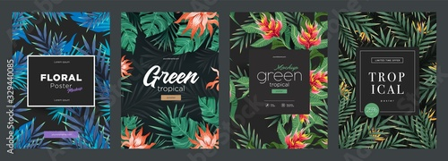 Set of Bright tropical backgrounds with jungle plants. Exotic patterns with tropical leaves