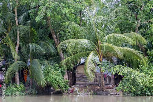 Photo Rural houses in the lush green backwaters of Barisal, Bangladesh