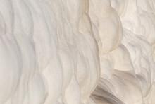 Pamukkale White Cotton-like Ro...