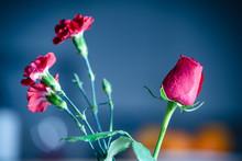 Red Roses Flowers In Vase.