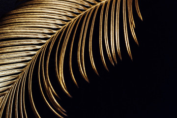 Painted Golden tropical leaves on black background. Glamor Creative layout, a...