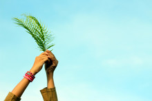 Leaf In Hand. Young Woman Holding Fern Or Palm Leaves In Hand On Bright Blue Sky Background. Palm Sunday Concept With Copy Space.