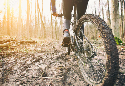 Obraz The cyclist is riding on mountain bike on dirt trail in forest in the early spring - fototapety do salonu