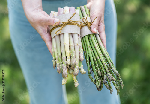 Bundle of white and green asparagus in famer's hands. Wallpaper Mural