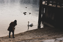 Woman Playing With A Swan