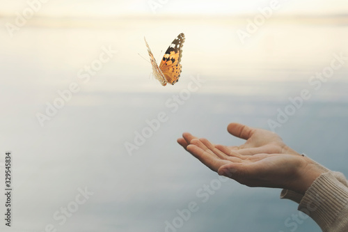 butterfly flies free from a woman's hand - 329545834
