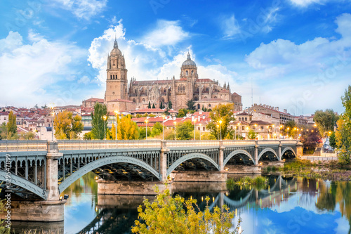 Cathedral of Salamanca and bridge over Tormes river