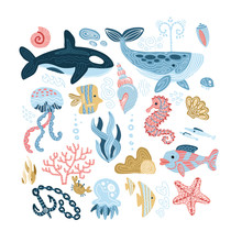 Set Of Sea Animals - Seashells...