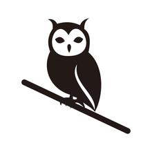 Owl Bird Vector Icon Illustration Sign
