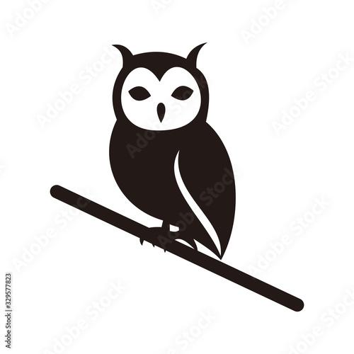 Owl bird vector icon illustration sign Fototapete