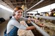 Leinwandbild Motiv Woman worker with hay working on diary farm, agriculture industry.