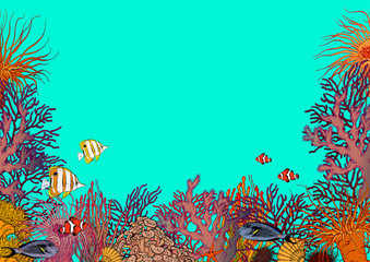Fototapeta na wymiar Turquoise blue underwater scenery with corals, sea anemones and beautiful tropical fishes.