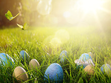 Art Easter Eggs On Green Grass At Sunny Day; Easter Banner Background With Copy Space;