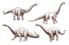 Vintage Set Of Diplodocus  ,se...