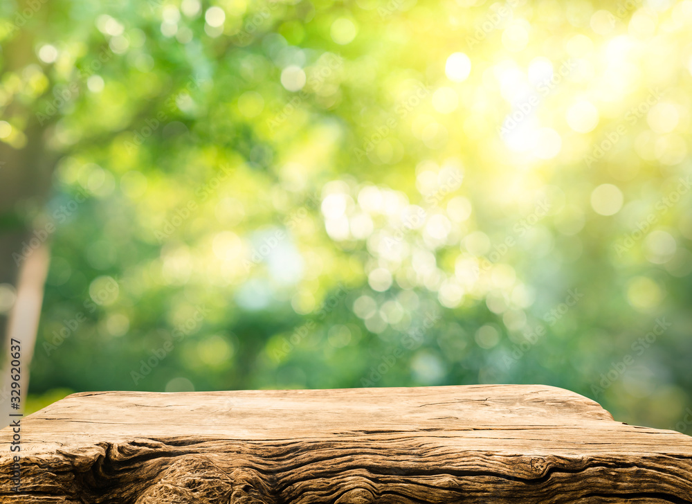 Fototapeta Real wood table top texture on blur leaf tree garden background.For create product display