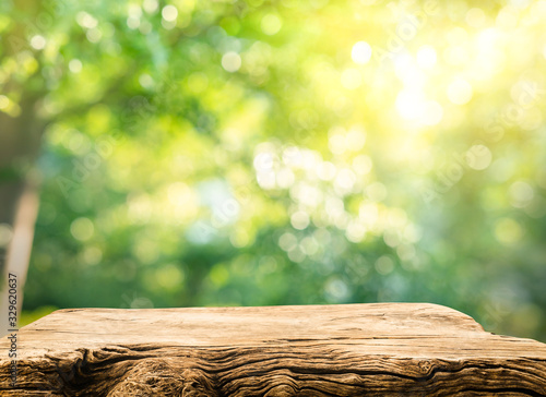 Fototapeta Real wood table top texture on blur leaf tree garden background.For create product display obraz