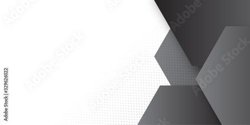 Carta da parati White abstract presentation background with hexagonal black grey silver