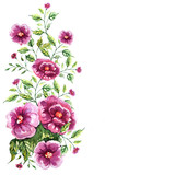 beautiful pink  rose, flowers isolated on a white background,, vintage postal