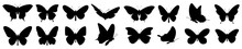 Butterflies Silhouette Set. Ve...