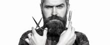 Mens Haircut In Barber Shop. Barber Scissors And Straight Razor, Barber Shop. Mens Haircut, Shaving. Male In Barbershop