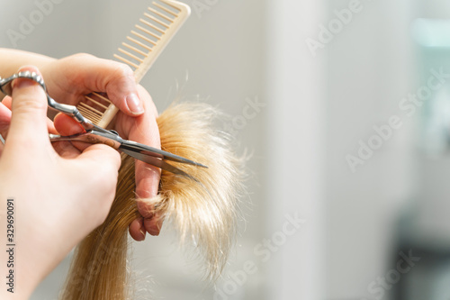 Professional hairdresser cutting split ends of her client