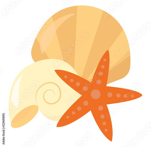 Canvastavla Seashell and star, illustration, vector on white background.