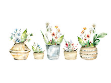 Hand Drawing Watercolor Spring...